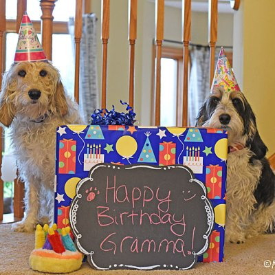 Happy Birthday Today To Our Special Gramma!