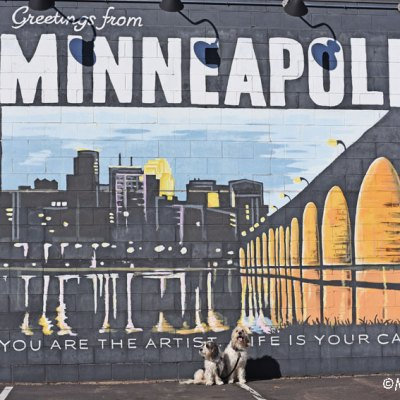 My GBGV Life Greetings From Minneapolis - Street Art