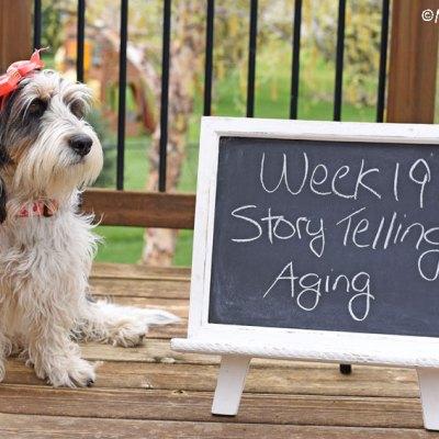 Story Telling – Aging #DogwoodWeek19