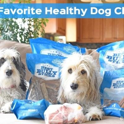 Healthy Dog Chews Make Perfect Evening Snacks