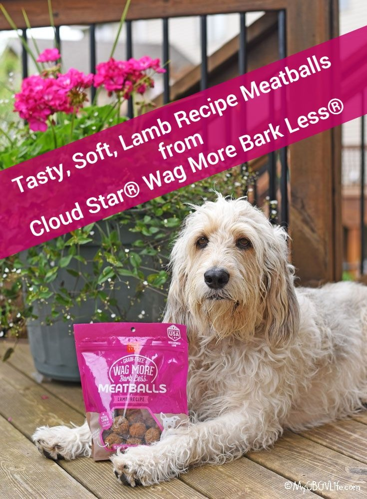My GBGV Life Lamb Recipe Meatballs for Dogs