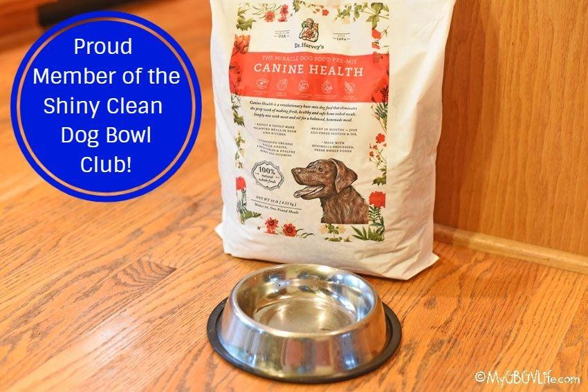My GBGV Life clean dog bowl club