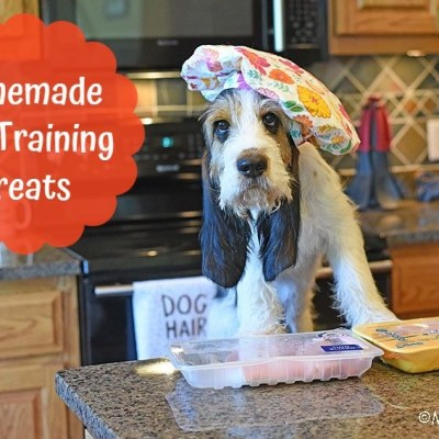 Simple Homemade Dog Training Treats For Your Dog