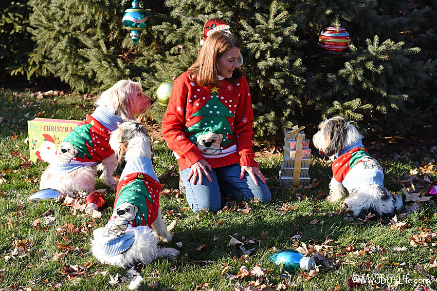 My GBGV Life Ugly Christmas Sweaters For You And Your Dog Make Holidays More Fun!