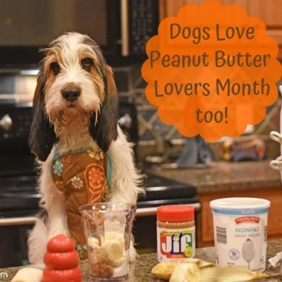 Dogs Love Peanut Butter Lovers Month Too – Recipe