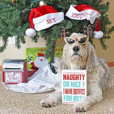Naughty Or Nice – Bailie Is Prepared!