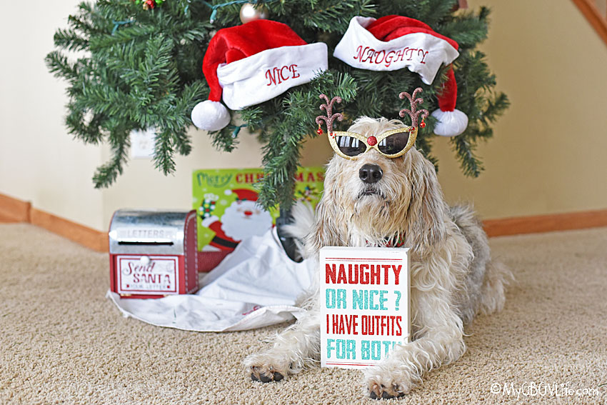 My GBGV Life Naughty Or Nice - Bailie Is Prepared!