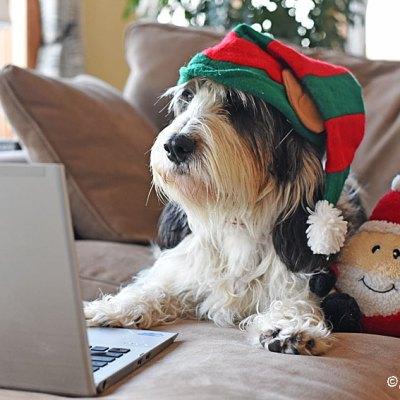 Preparing For Santa Christmas Eve 2019