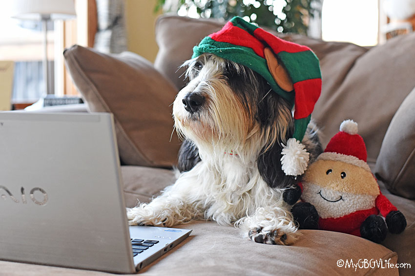 My GBGV Life Preparing For Santa Christmas Eve 2019