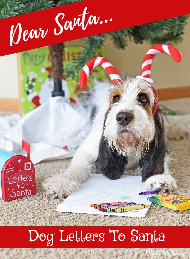 My GBGV Life a dogs letter to Santa