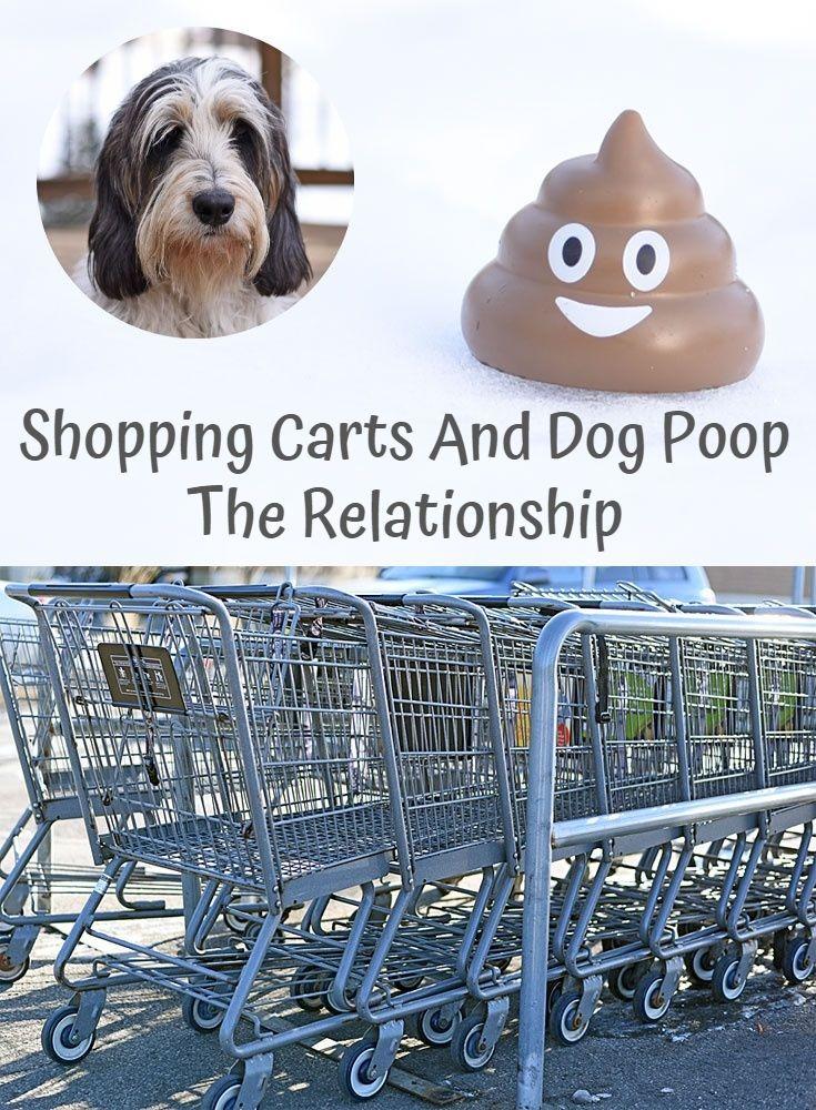 My GBGV Life scoop that dog poop