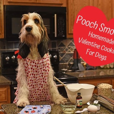 My GBGV Life Pooch Smooches - Homemade Valentine Cookies For Dogs