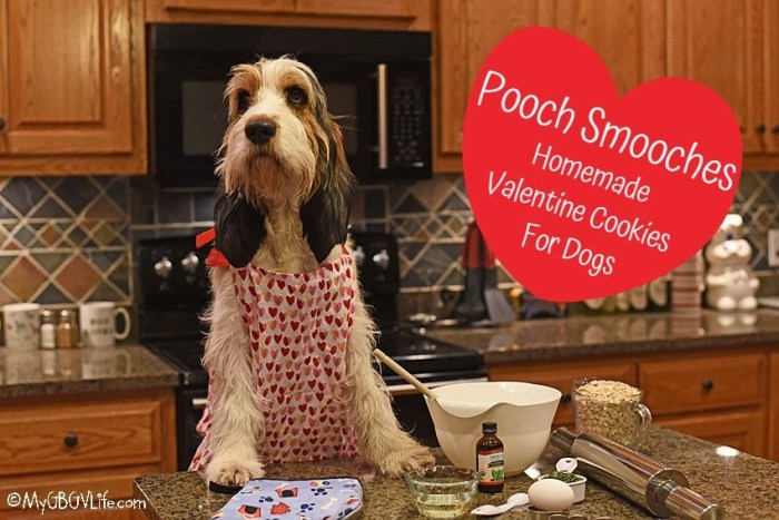 Pooch Smooches – Homemade Valentine Cookies For Dogs