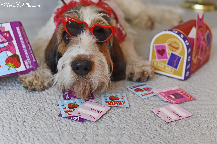 My GBGV Life Valentine's Week - Puppy Valentine Dreams