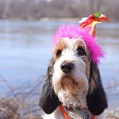 Happy First Birthday, Olivia!