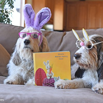 Time To Read Down Easter Bunny Lane