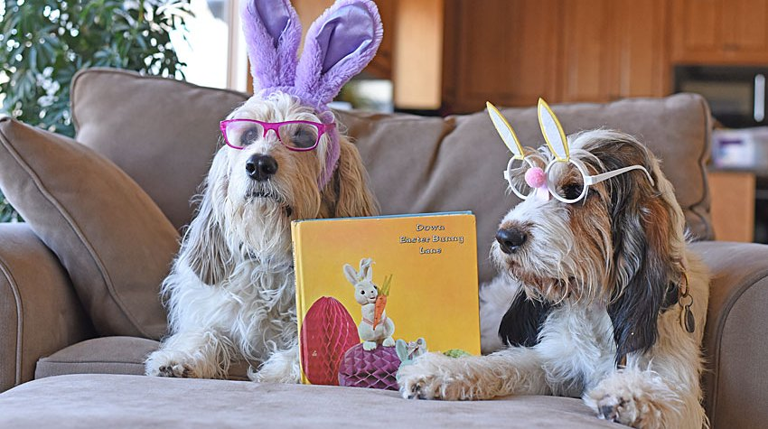 My GBGV Life Time To Read Down Easter Bunny Lane