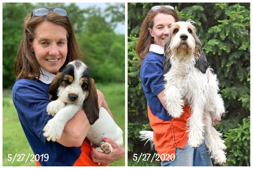 My GBGV Life What A Difference A Year Can Make! Olivia's Gotcha Day