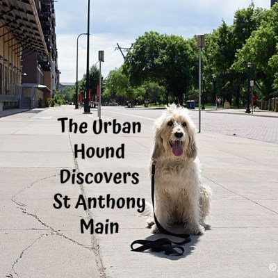My GBGV Life The Urban Hound Discovers St Anthony Main