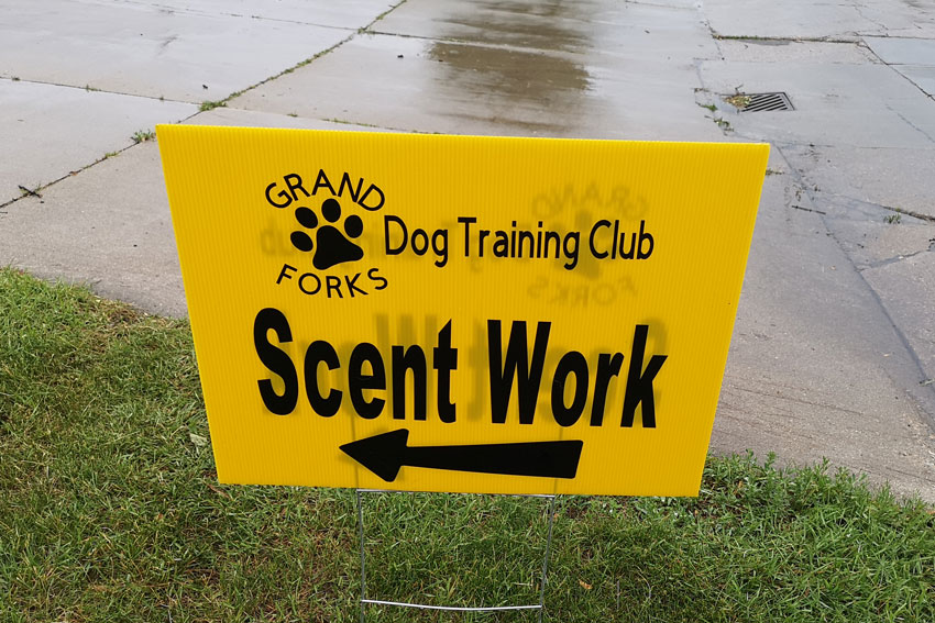 My GBGV Life Scent Work Results From Grand Forks, North Dakota