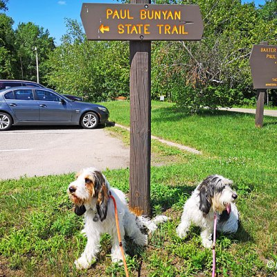 Fun On The Paul Bunyan State Trail