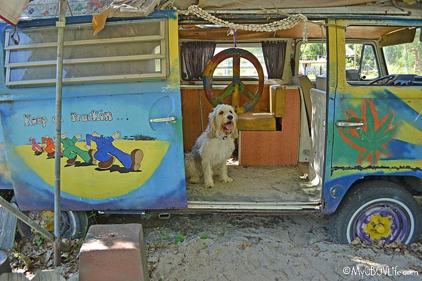My GBGV Life Bailie in VW bus