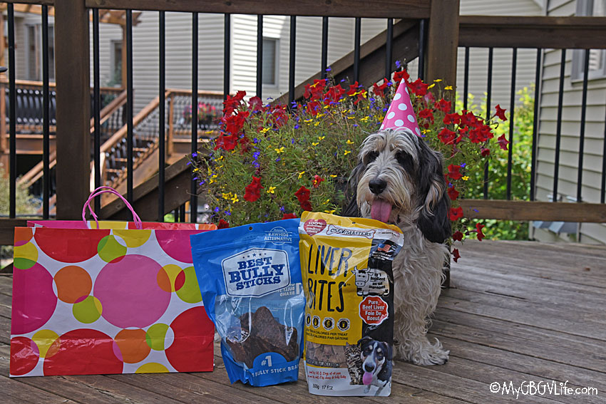 My GBGV Life Fancy Dog Cookies For Madison's 4th Birthday Party