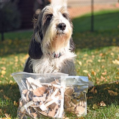 We're Thankful For Healthy New Dog Treats
