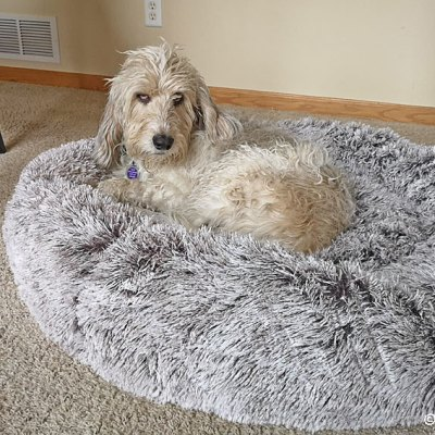 Preparing For A Cozy Winter With My New Bed