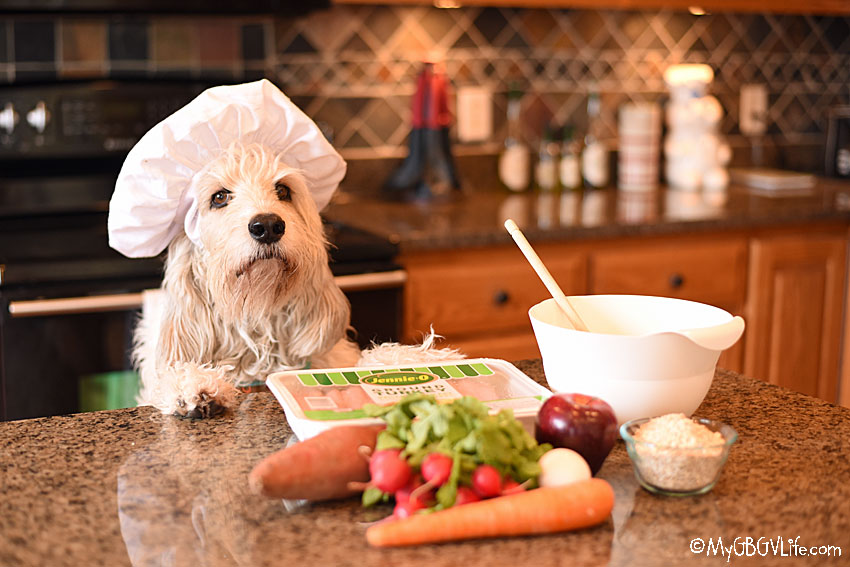 My GBGV Life Thanksgiving Turkey Dinner For Your Dog
