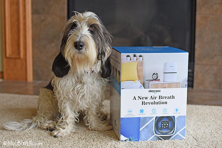 My GBGV Life Enjoy Clean Air With The Okaysou Air Purifier