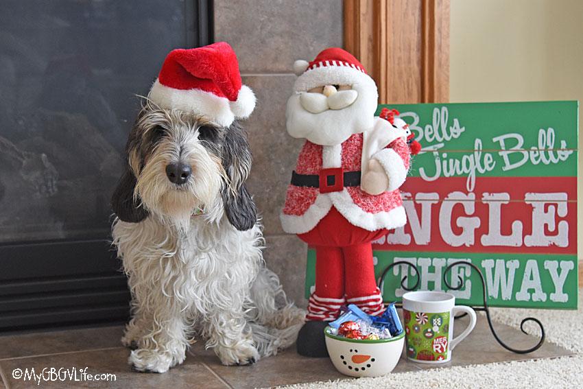 My GBGV Life Madison Santa care