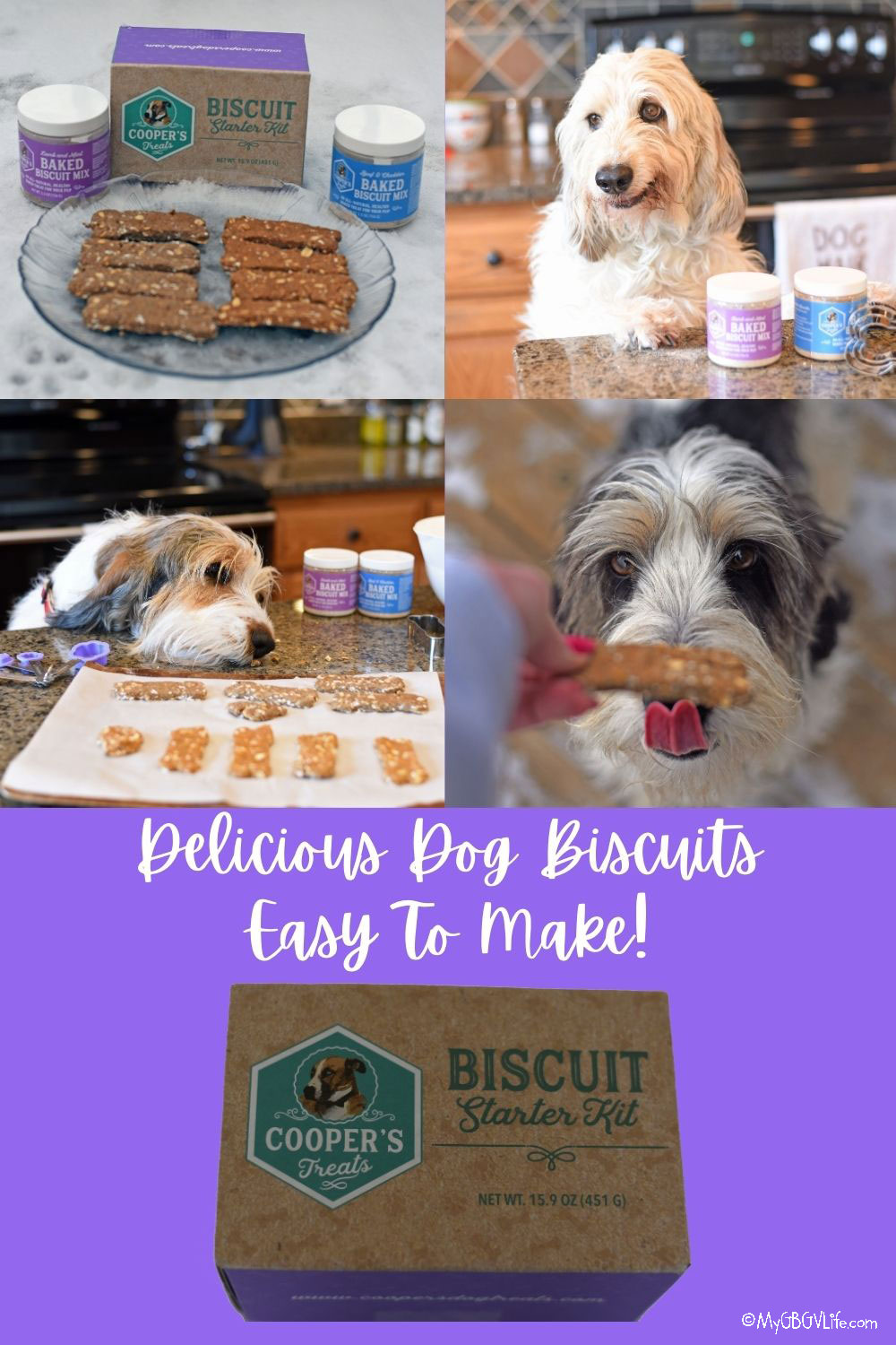 My GBGV Life All Natural, Healthy, Dog Biscuit Mix - Giveaway!