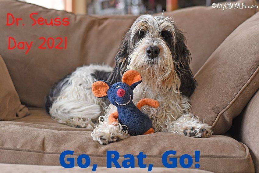 My GBGV Life Go, Rat, Go! Celebrating Dr. Seuss Day 2021