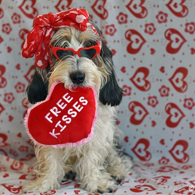 Free Kisses For Valentines Day – Any Takers?