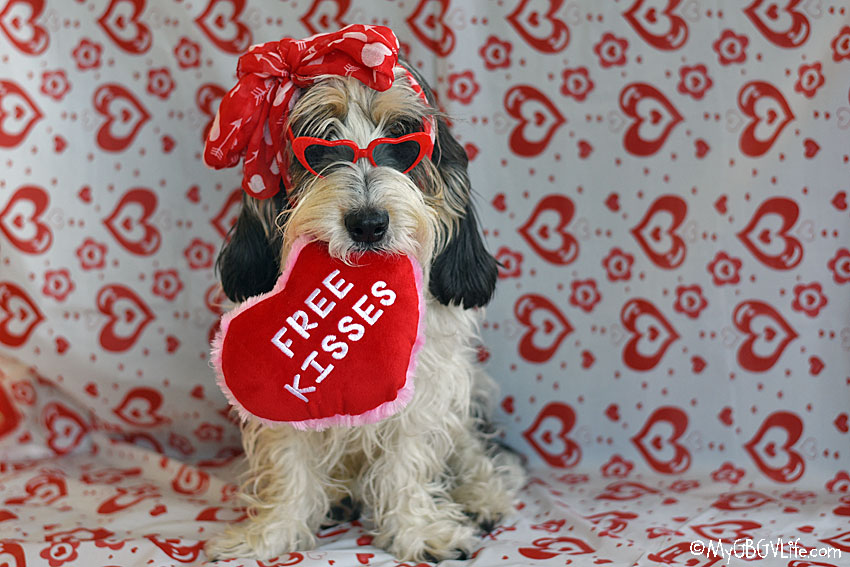 My GBGV Life Free Kisses For Valentines Day - Any Takers?