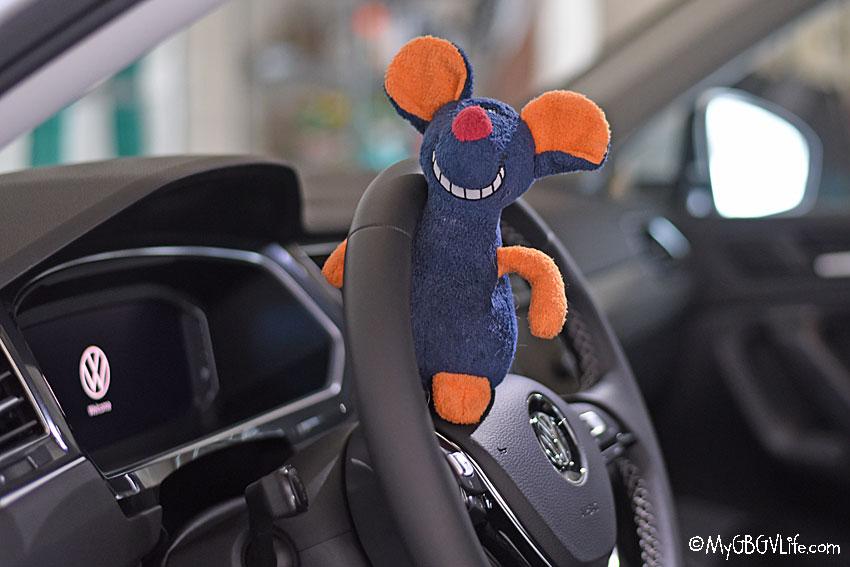 My GBGV Life rat in a car