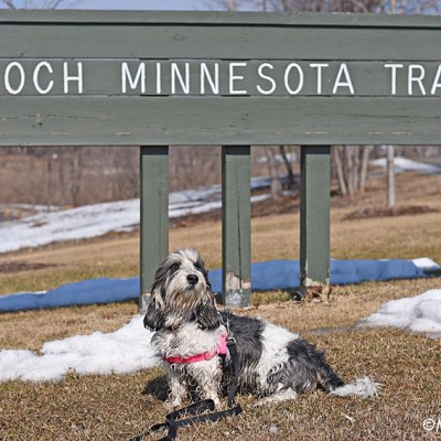 A Walk On The Koch Minnesota Trail