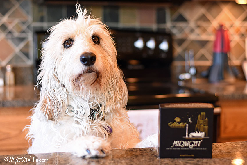 My GBGV Life Mom's Day Gift Ideas From The Dog