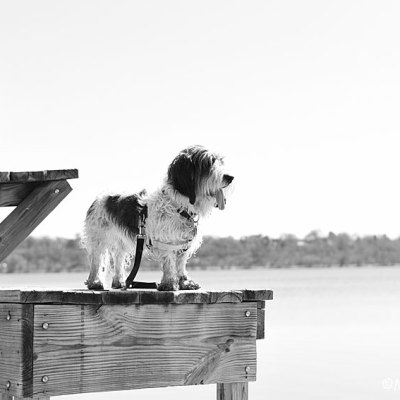Adorable Baywatch Life Guard In Black And White