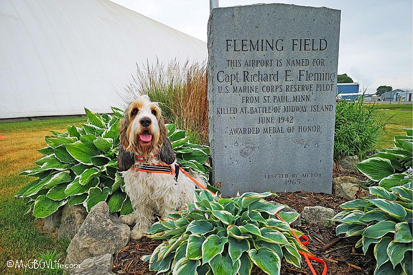 My GBGV Life Fleming Field