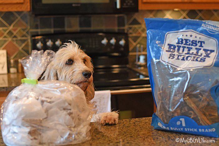 Green Beef Tripe Is A Wonder Food For Dogs