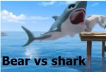 1 Bear vs shark
