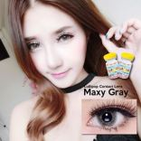 lollipop maxy grey