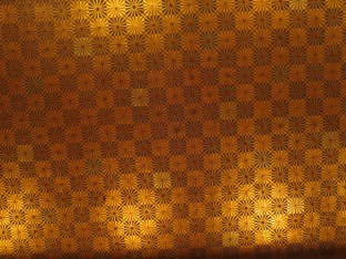 The beautiful ceiling was patterned with two shades of gold