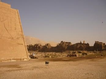 Egypte 201