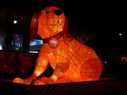 Lanterne chien
