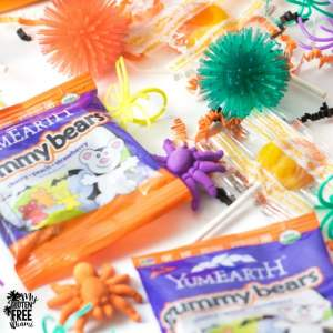 Allergy Friendly Trick or Treating | http://myglutenfreemiami.com