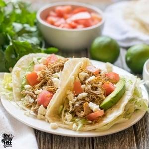 Gluten Free Mexican Shredded Chicken Tacos