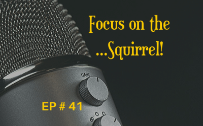 Focus on the …Squirrel! EP 41